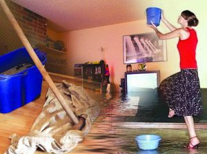 Независимая экспертиза затопили соседи