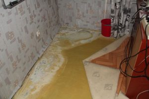 Независимая экспертиза после ремонта квартиры