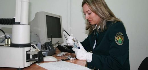 Таможенная экспертиза и сертификация нефтепродуктов
